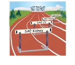 [98] ¿El ensayo SPRINT cambia nuestro enfoque sobre los objetivos de tensión arterial?